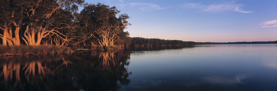Myall Lake Reflection